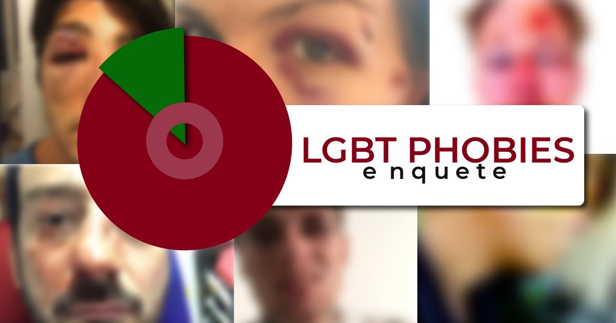 enquete sondage homophobie lgbt phobie france